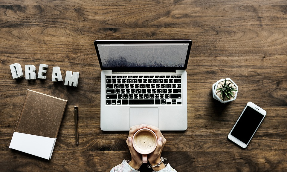Blogpreneur Review and blogging